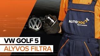 Išmontavimo Alyvos filtras VW - vaizdo vadovas