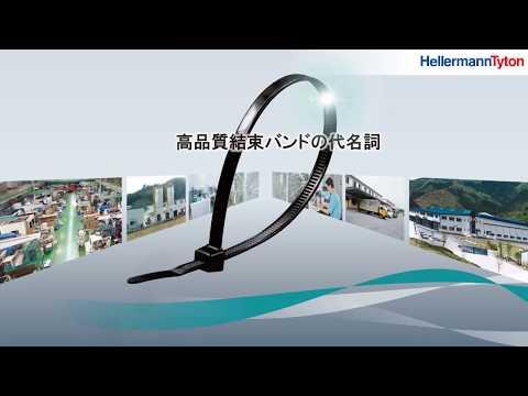 ヘラマンタイトン総合カタログ最新改訂版発行について