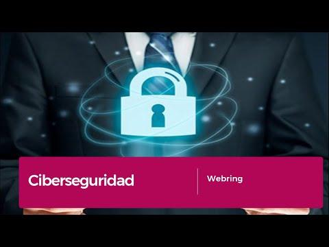 CiberSeguridad. Conoce los riesgos a los que se enfrenta tu organización. Webring