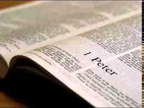1 Peter 4 - New International Version NIV Dramatized Audio Bible