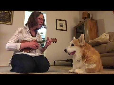 Corgi-Music Soothes the Savage Beast