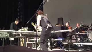 Einsturzende Neubauten Live in Ljubljiana 27 nov 2014 Der 1  Weltkrieg Percussion Version