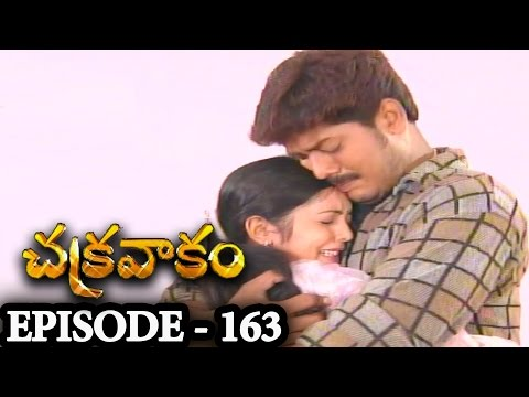 Episode 163 | Chakravakam Telugu Daily Serial