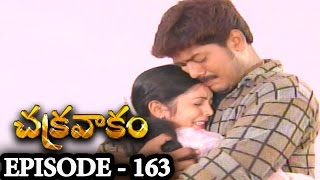 Episode 163   Chakravakam Telugu Daily Serial