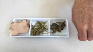 Herbal Medicine for Eczema