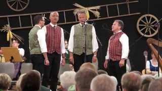 """Musikanten Treffen Stallhofen """"Ambrosi Quartett"""" 11.9.2015-43a"""