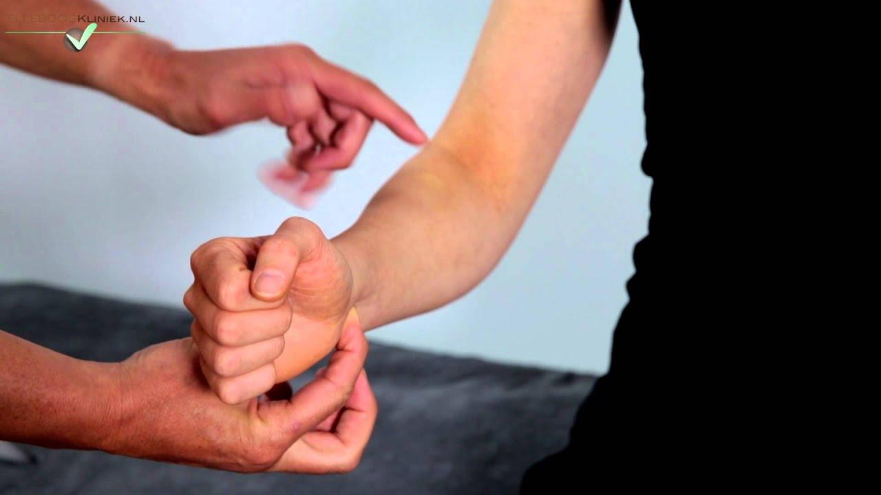Distal Biceps Tendon 2