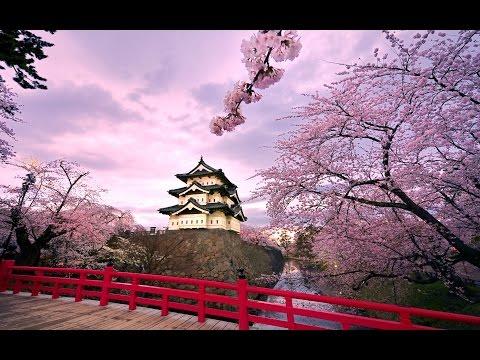 العظماء المائة 23: الصعيدي الذي دعا إمبراطور اليابان للإسلام... #جهاد_الترباني