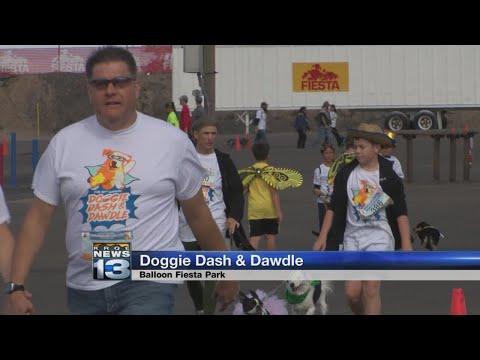 Thousands Participate In Annual Doggie Dash And Dawdle