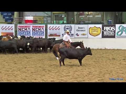 Exotic Ride  2017 Denver Nationals 5,000 Novice 1st Go Score  218.5