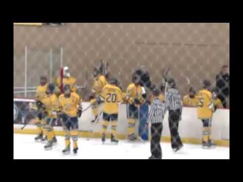 NAPHL U16; Omaha at AZ Bobcats; Troy MI; 2017-01-07