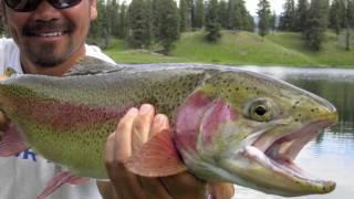 Yellowstone 2011 Fishing Trip