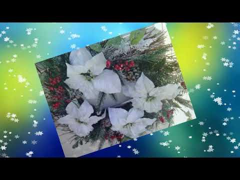 ♥ Ƹ̵̡Ӝ̵̨̄Ʒ ♥ FLORILE DALBE  White Flowers~ Romanian Carol