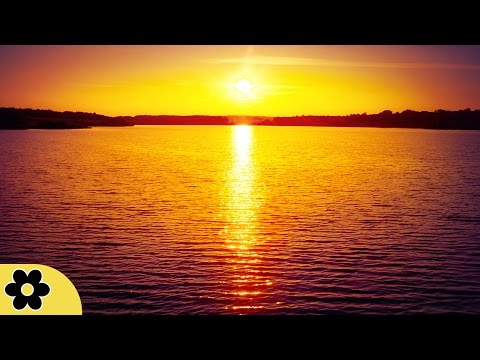8 Hour Sleep Music, Calm Music for Sleeping, Delta Waves, Insomnia, Relaxing Music, �C