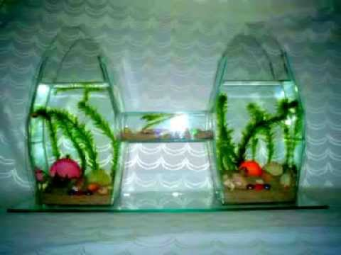 Liverpool acuarios en dise os liverpool aquarium designs - Peceras de diseno ...
