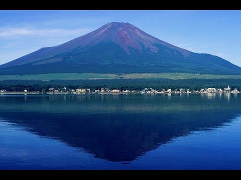 Welcome to Shizuoka Prefecture - ALTIA CENTRAL