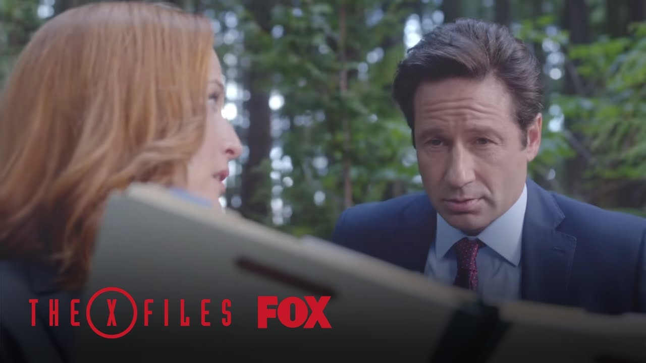 Download Scully And Mulder Study Their Evidence | Season 10 Ep. 3 | THE X-FILES