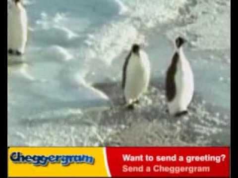 Эскимоска (2012-2015) скачать бесплатно
