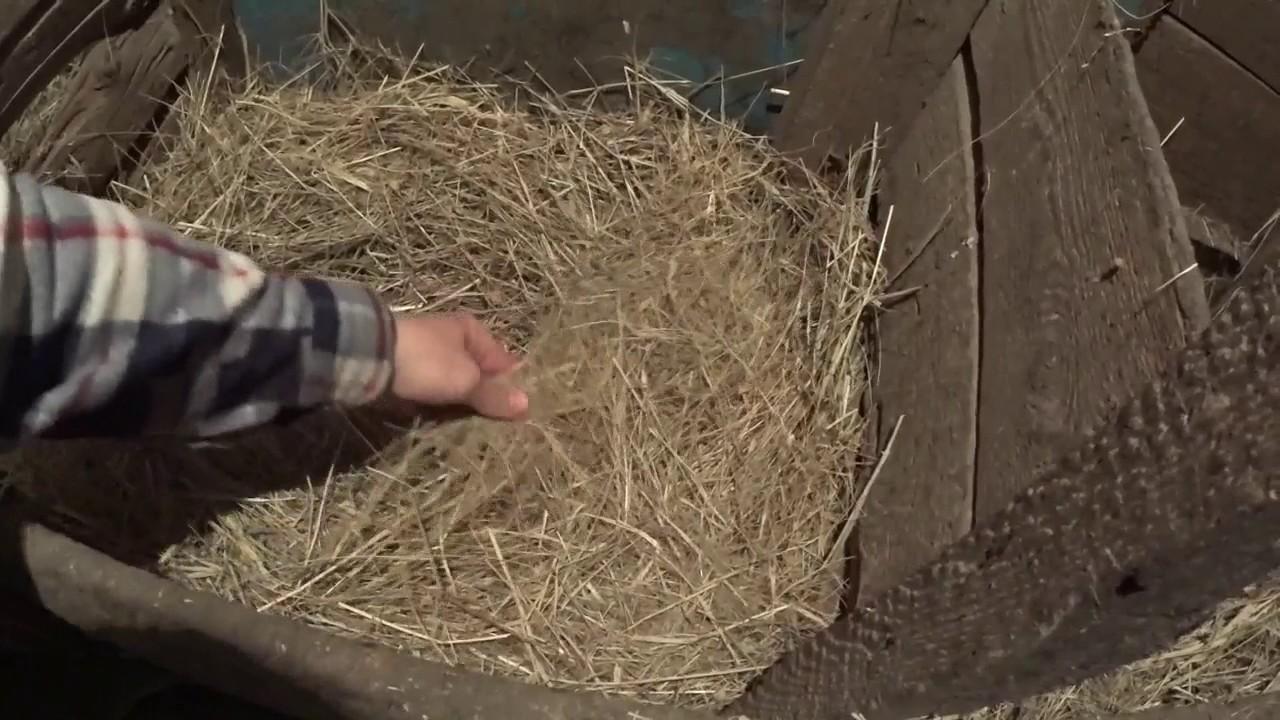 Как сделать гнездо для уток фото 419