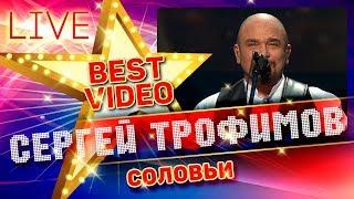 Смотреть клип Сергей Трофимов - Соловьи