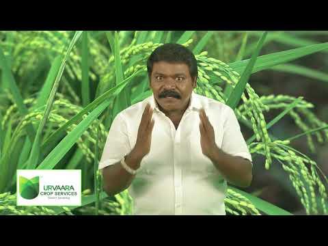 Land Preparation ,Seedlings ,Scientific Transplantinig as narrated by Cine artist Iman Annachi