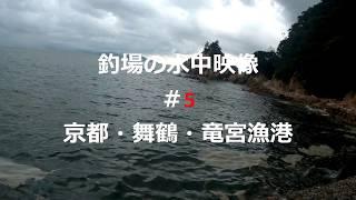 釣場の水中映像#5舞鶴・竜宮漁港(アジ・カンパチ等)