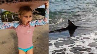 Little Girl Surfs with Big Shark in Hawaii