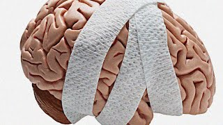 ✔ What Kills Brain Cells And How To Prevent It?