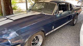 1967 Shelby GT 500 Drive!!