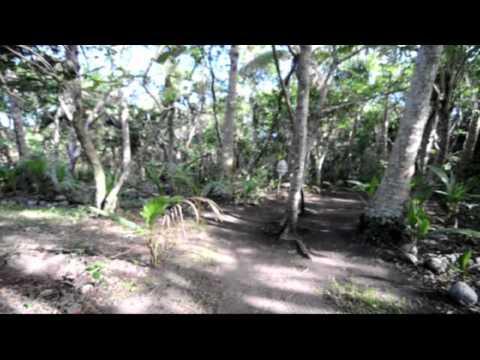 Serenity Beaches Island Resort - Uoleva Island, Ha'apai, Tonga - HD