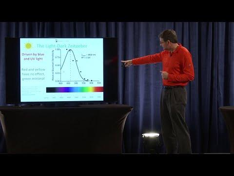 How to Maintain Your Circadian Rhythm   Dr. Paul Jaminet Ph.D.