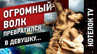 Продолжение истории: Огромный волк превратился в девушку (ч.2)