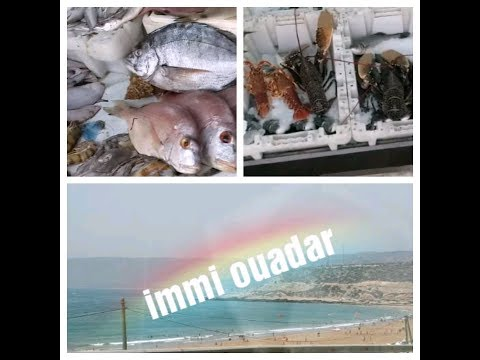 فلوق #شاطئ ايمي ودار# الخيرات البحرية للمنطقة، لمحبي السمك من البحرللشواية مرحبا