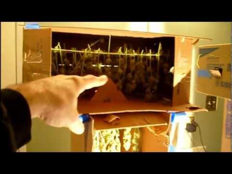 Drying Box Demo.wmv - YouTube