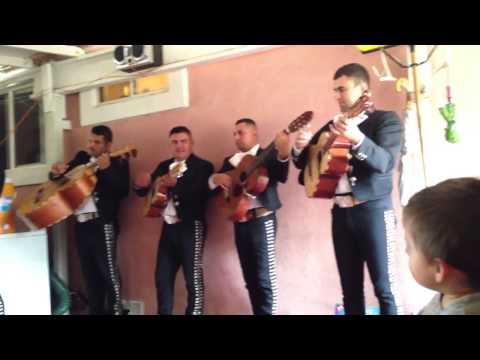 Mariachi mi Tierra Linda- Escuche Las Golondrinas