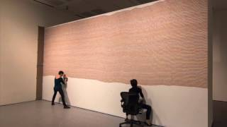 Time Lapse of Sol LeWitt