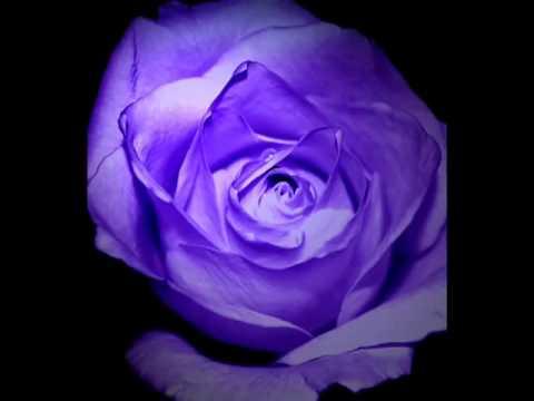 La vie en rose by Lisa Ono with Lyrics.flv