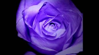 La vie en rose by Lisa Ono with Lyrics.flv