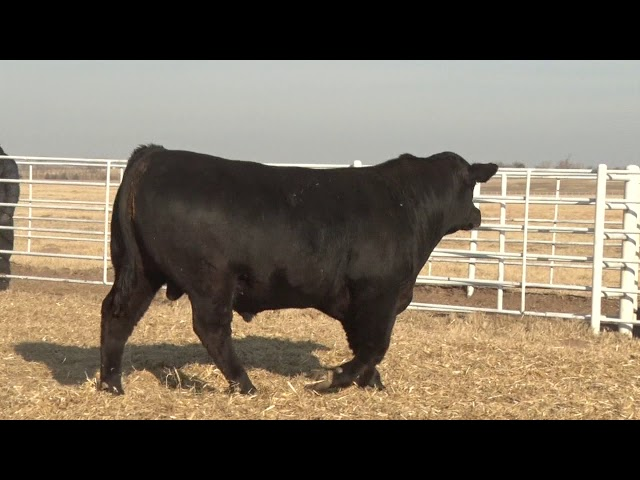 Express Ranches Lot 305