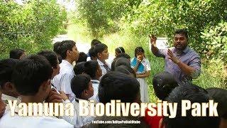 Yamuna Biodiversity Park - Part 2 : Flora & Fauna ..with school kids :)