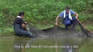 [Vietsub] Nhân giống cá Koi ở Nhật Bản