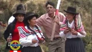 CLAVELITAS DE SURCUBAMBA I  - TAYACAJA (Santiago con Yungor)