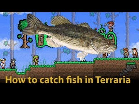 Full download fishing npc angler npc quests terraria for Terraria fishing bait
