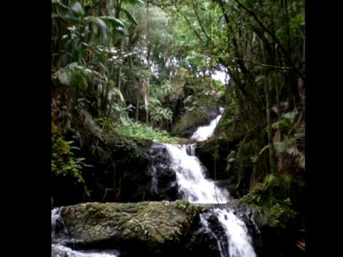 kauai beauty - gabby pahinui