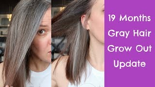 19 Months Gray Hair Grow Out Update