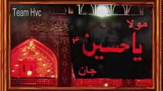 Video Main inteqam lon ga ..Ali safdar live Nohakhuwani at jaffar e tayyar 2016 download MP3, 3GP, MP4, WEBM, AVI, FLV November 2017