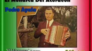 Don Pedro Ayala - El Morroco    (Huapango)