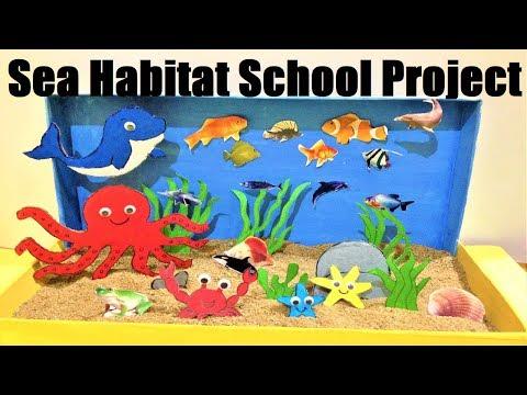 Sea Habitat School Project Diorama Model  | Aquatic Animals Model Making Easily At Home | Howtofunda