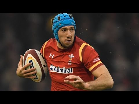 JUSTIN TIPURIC 'THE LION' TRIBUTE