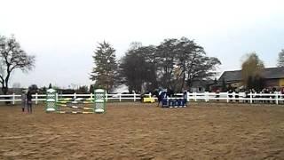 hubertus Aura 2011 skoki